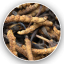ถังเช่า (Cordyceps Simensis) thumbnail 3